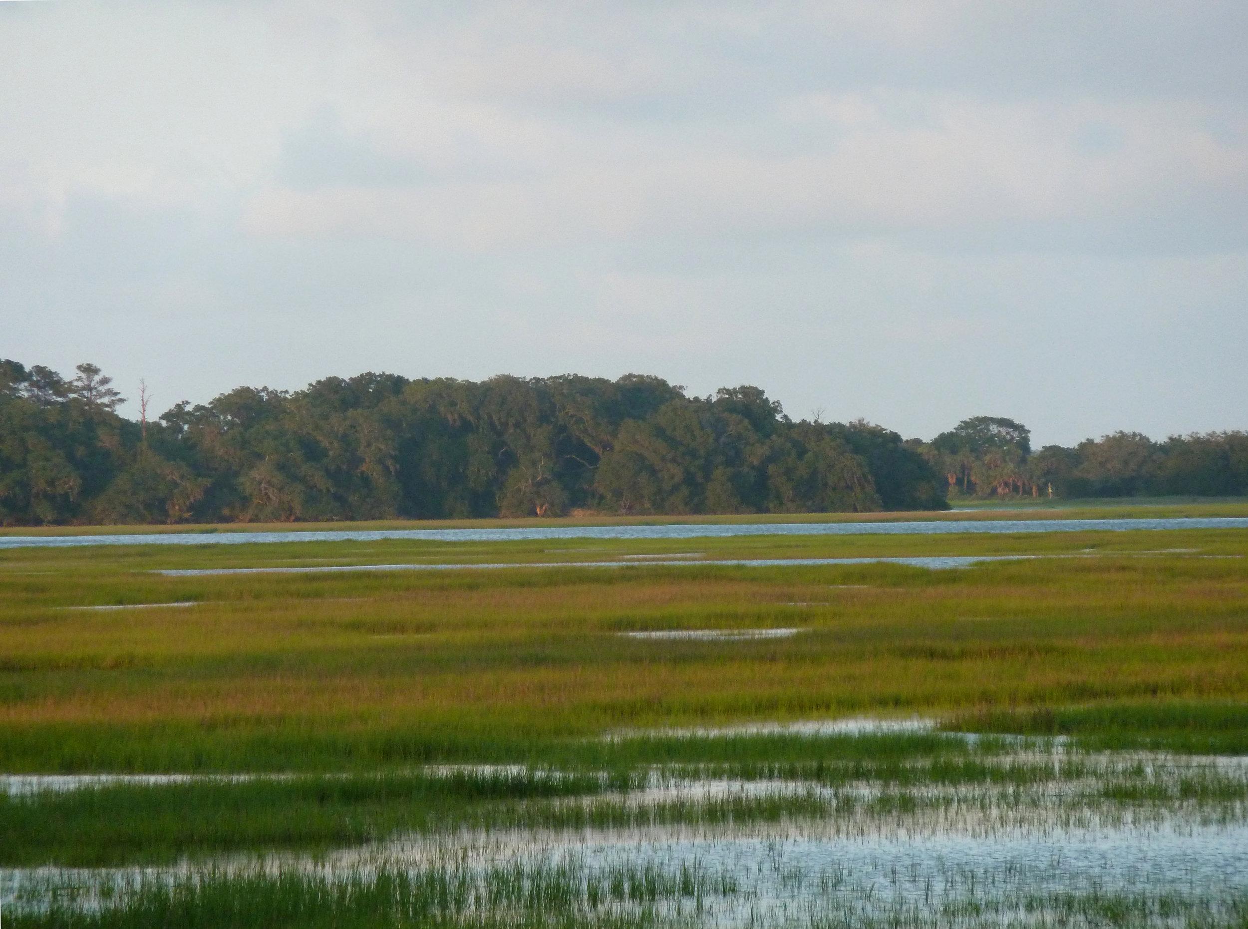 The Marshes at Cedar Point, Georgia