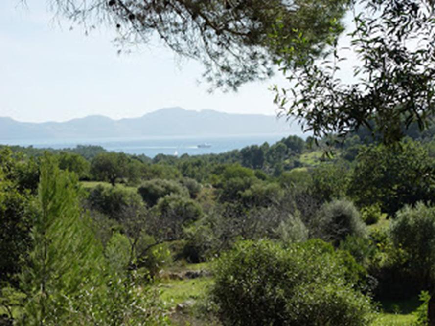 En route to Sa Bassa Blanca, Mallorca (Rundle Cook photographer)