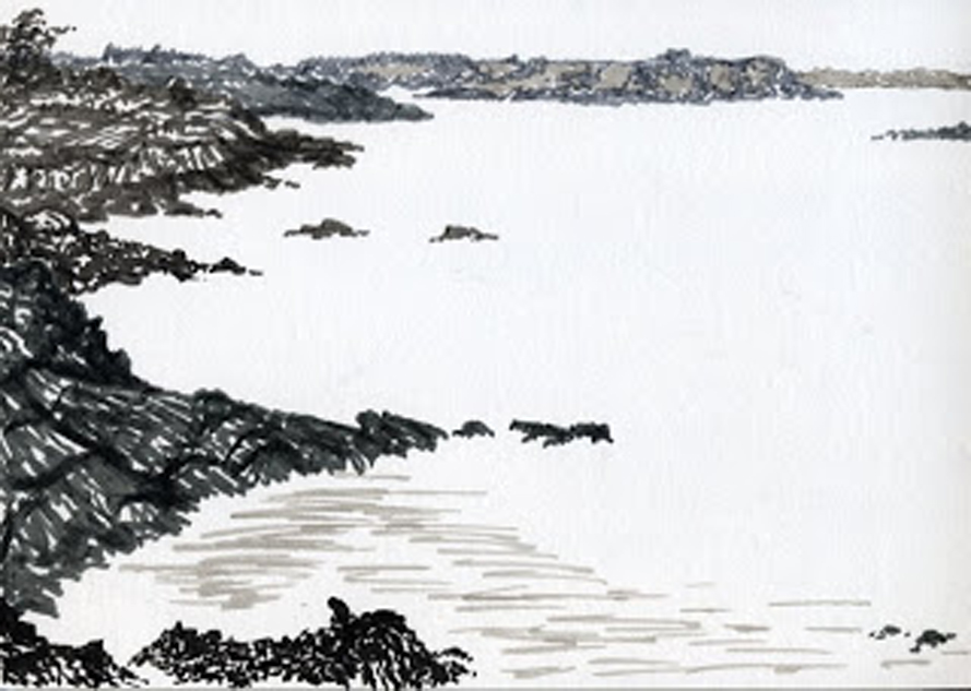 Pointe du Grouin, Cancale - inks., Jeannine Cook artist
