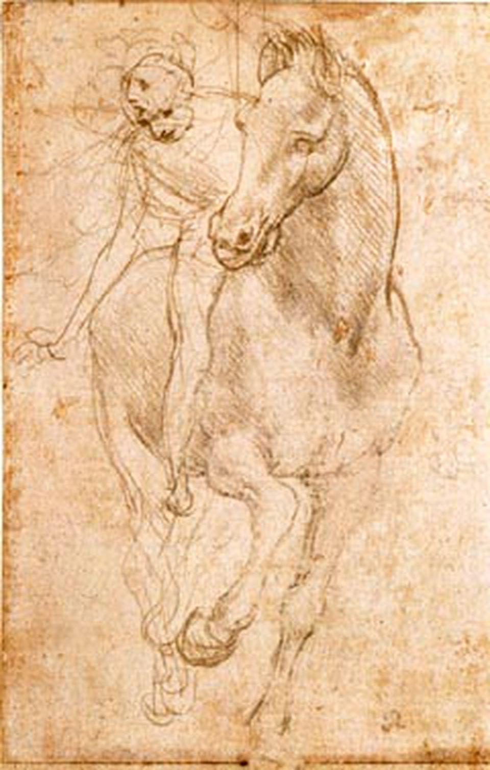 Study of Horses, Leonardo da Vinci, silverpoint