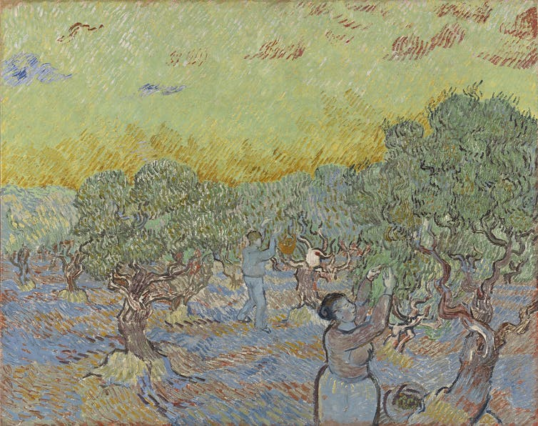 Olive Grove with two olive pickers, V. Van Gogh, (Image courtesy of Collection Kröller-Müller Museum, Otterlo, Netherlands)