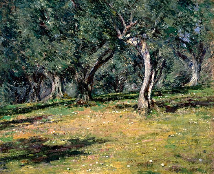 Olive Grove, Capri, 1890. Theodore Robinson (Image courtesy of Colby College Museum of Art)
