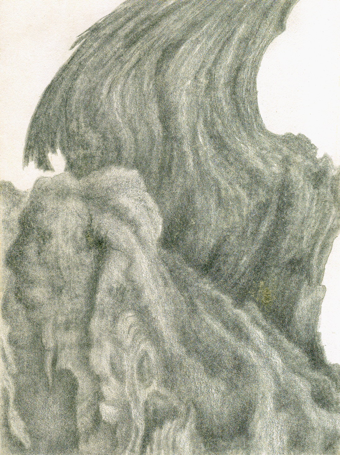 August Olive, Sousel, silverpoint, Jeannine Cook artist