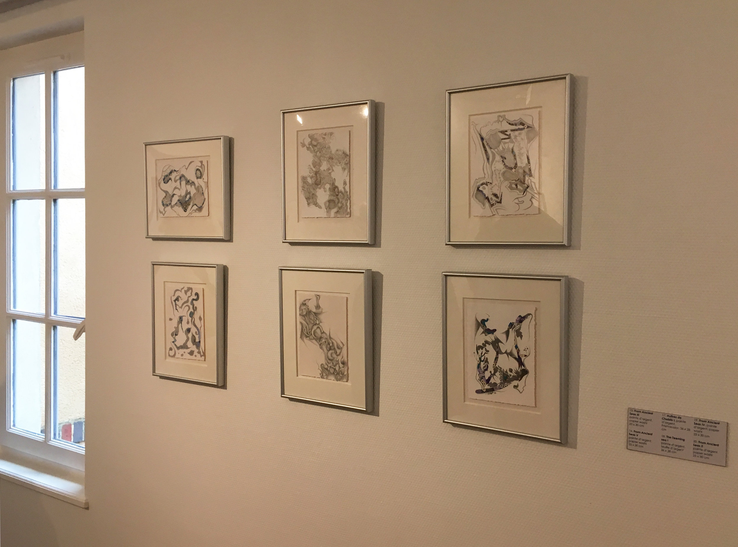 Another part of the Terratorium exhibition (Photograph courtesy of Michelle Anderson)