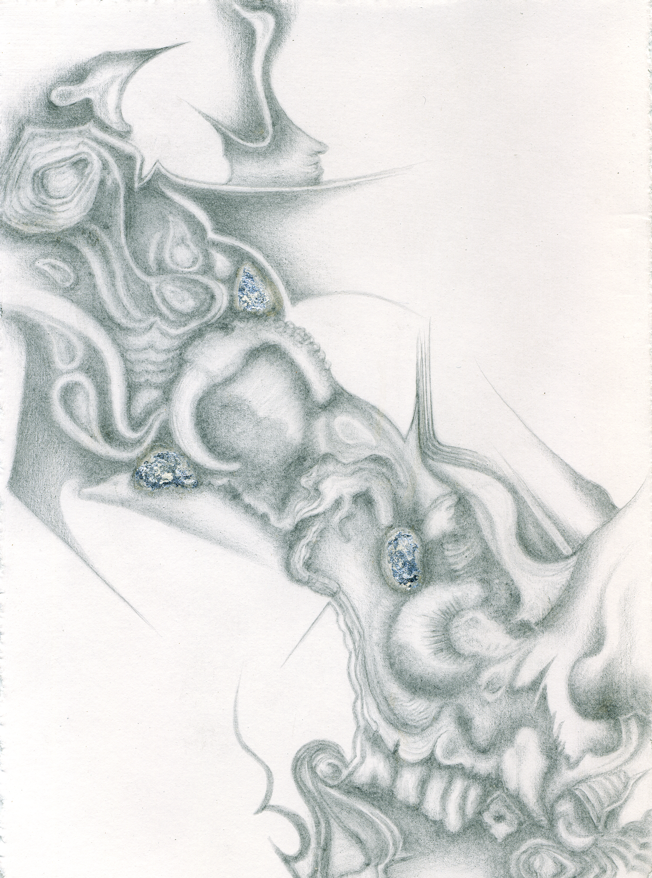 The Teeming Sea I, silverpoint - silver foil, Jeannine Cook artist