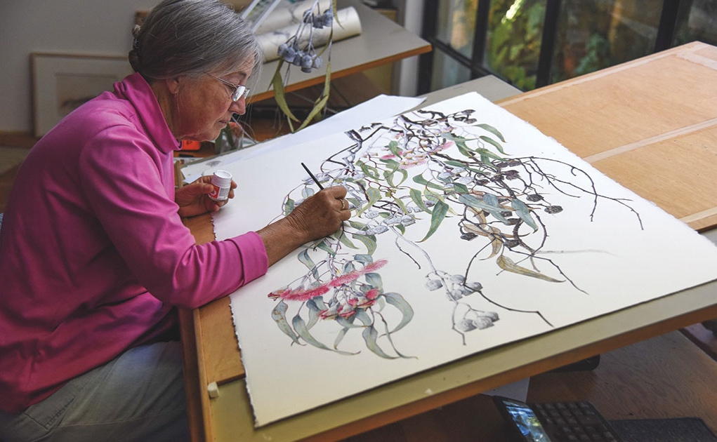 Philippa Nikulinsky finishing the painting of  Eucalyptus caesia  in studio, 2016, courtesy the artist