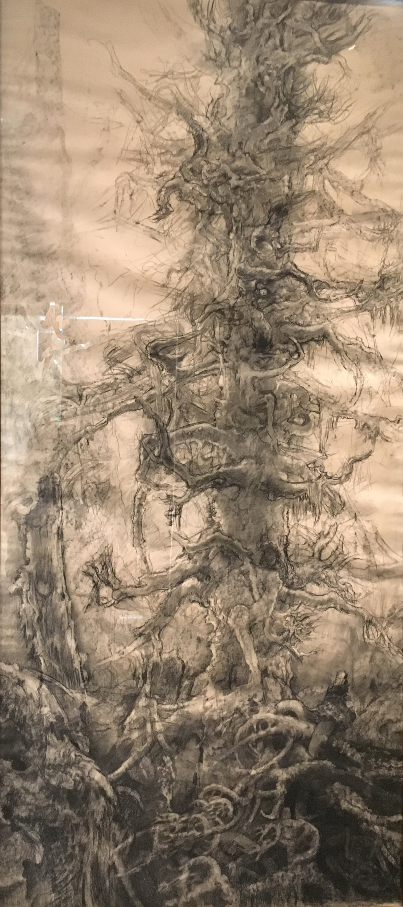 Trees (Dark against Light), 1962, charcoal on paper, Hyman Bloom (Photograph J.Cook)