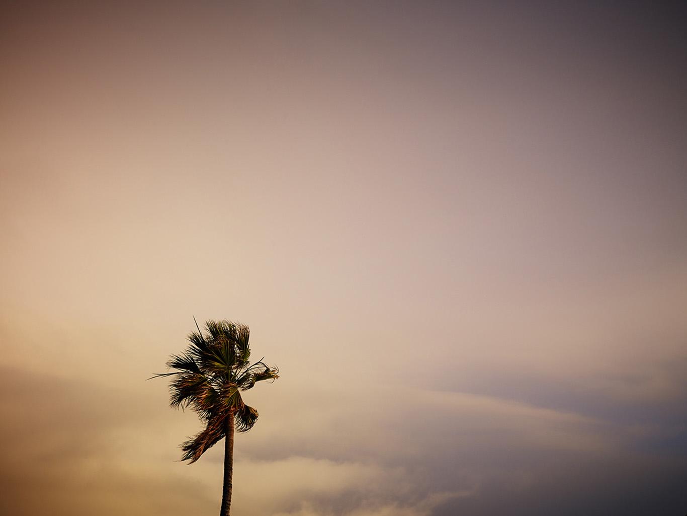 landscape-002.jpg