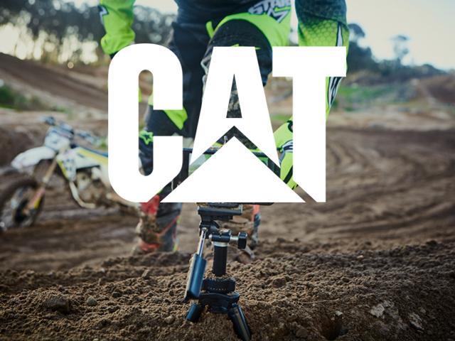 cat-phones.jpg