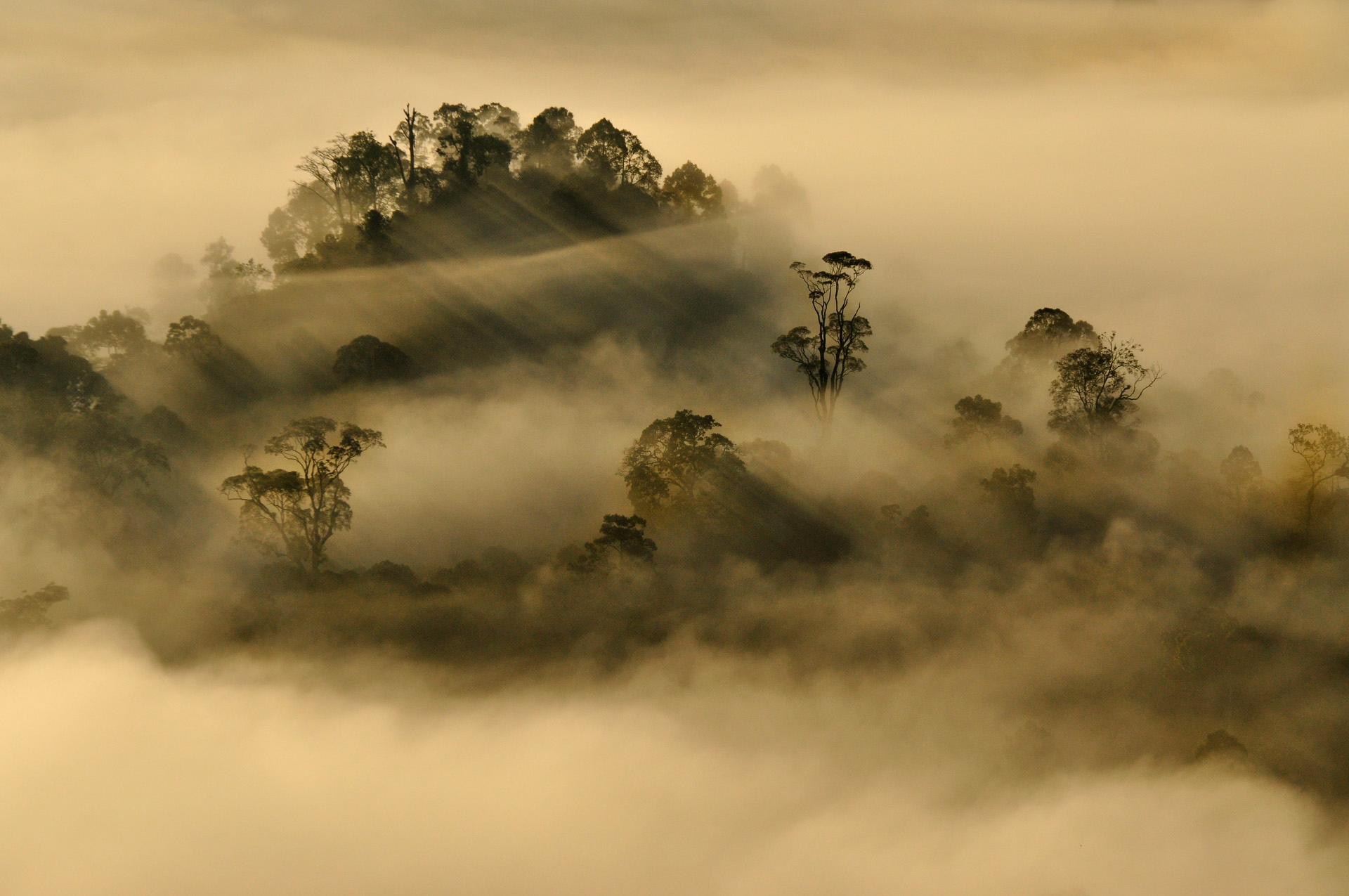 Borneo, Malaysia