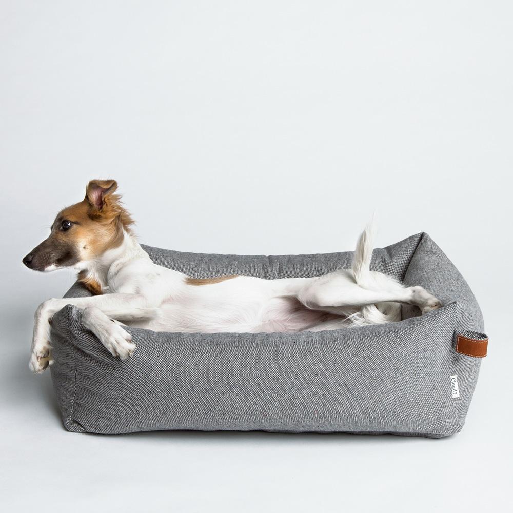 Hunde3.jpg
