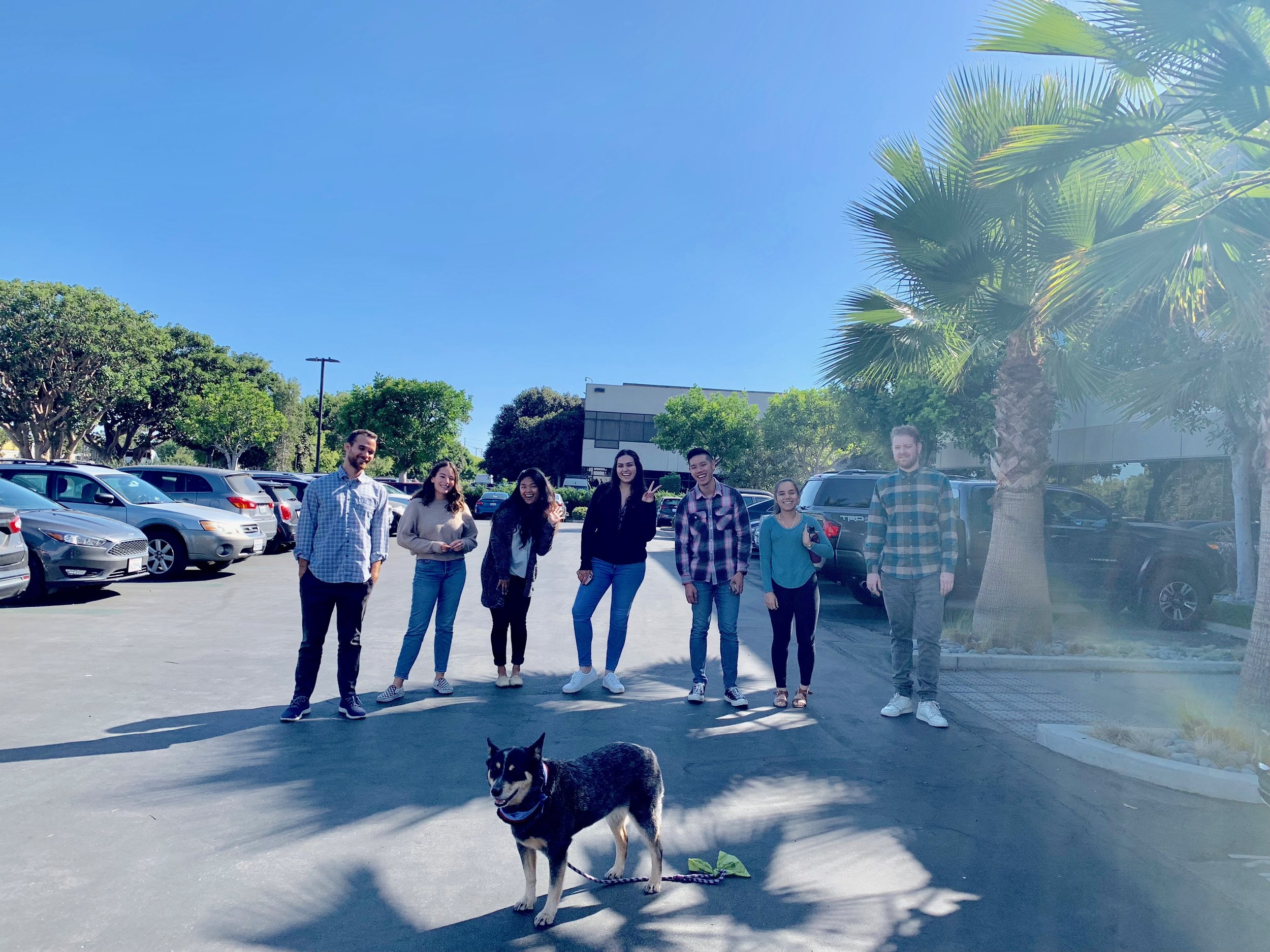 First Day of #BarkJump - Bring Your Dog to Work Day!