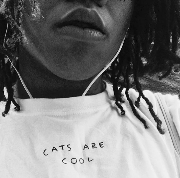 tshirt_cats.jpg