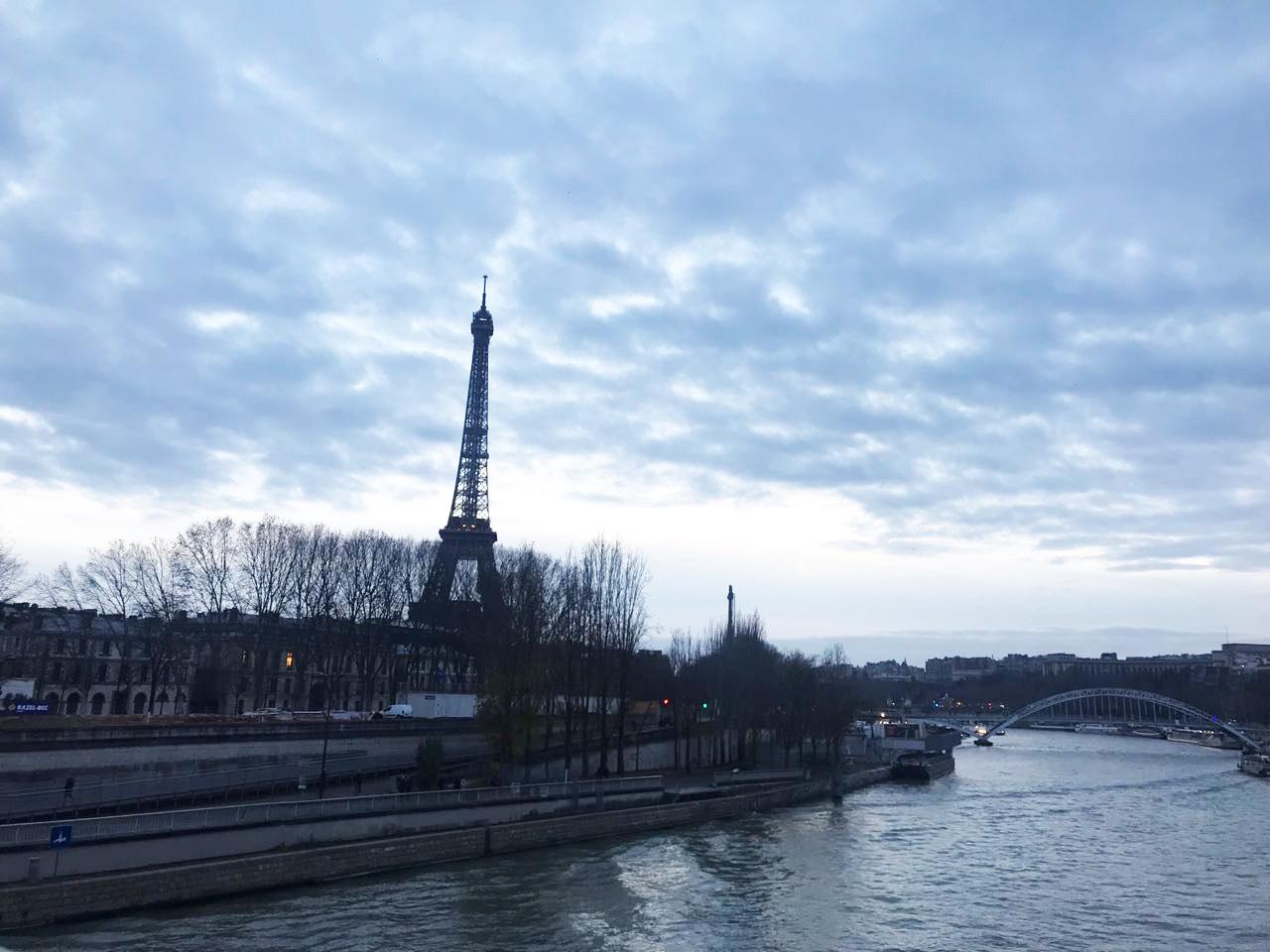 PARIS 2017 | picture by Anna Klappenbach ©birdsneverbored.com