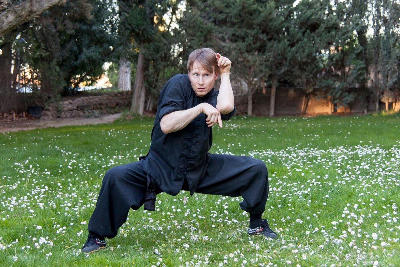 Monkey Kung Fu style Choy Li Fut in Norwich.JPG