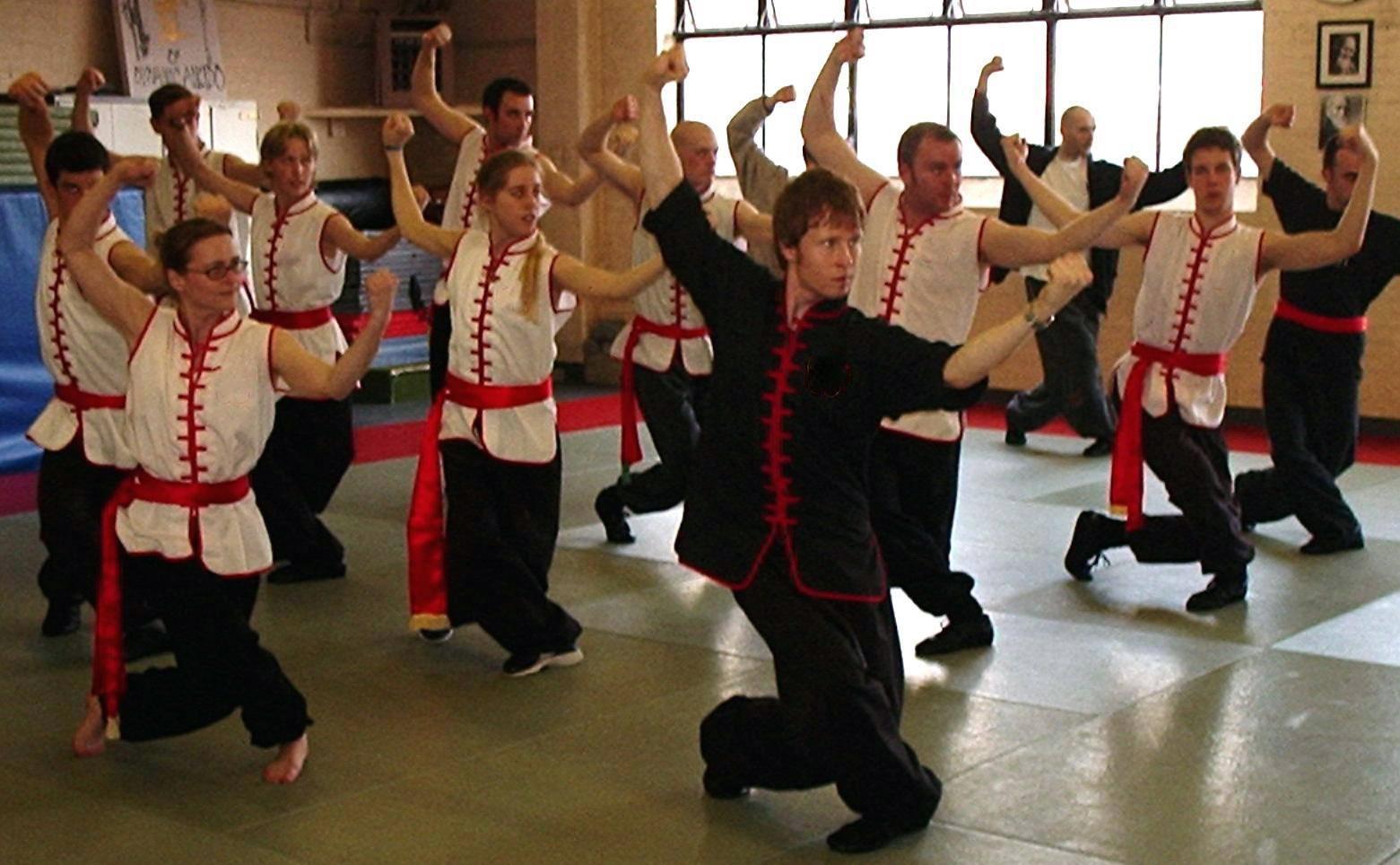 choy li fut seminar Kung fu in Norwich niel willcott.jpg