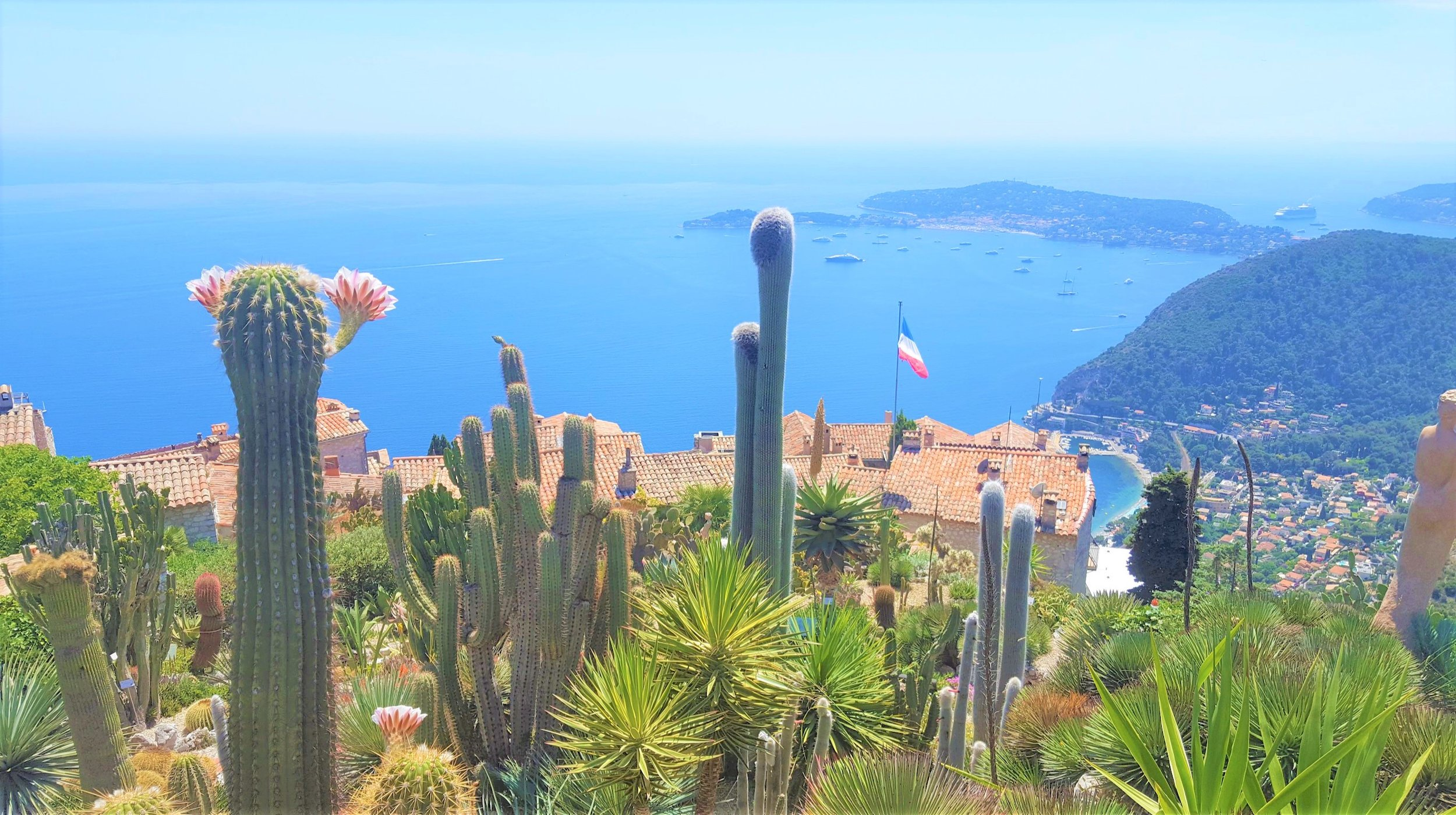 VIEW FROM EZE GARDENS