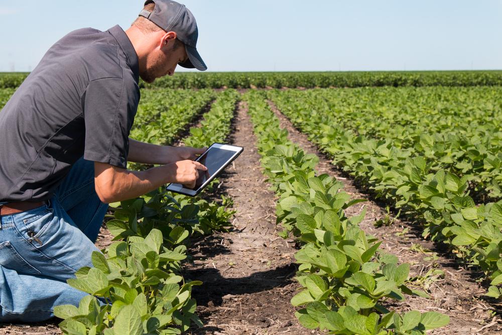 cpc farmer 25.jpg