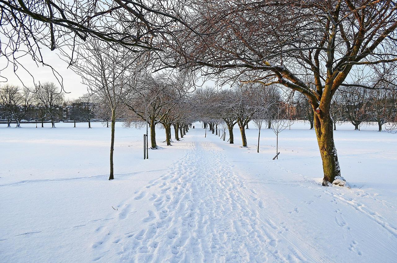 winter-72837_1280.jpg