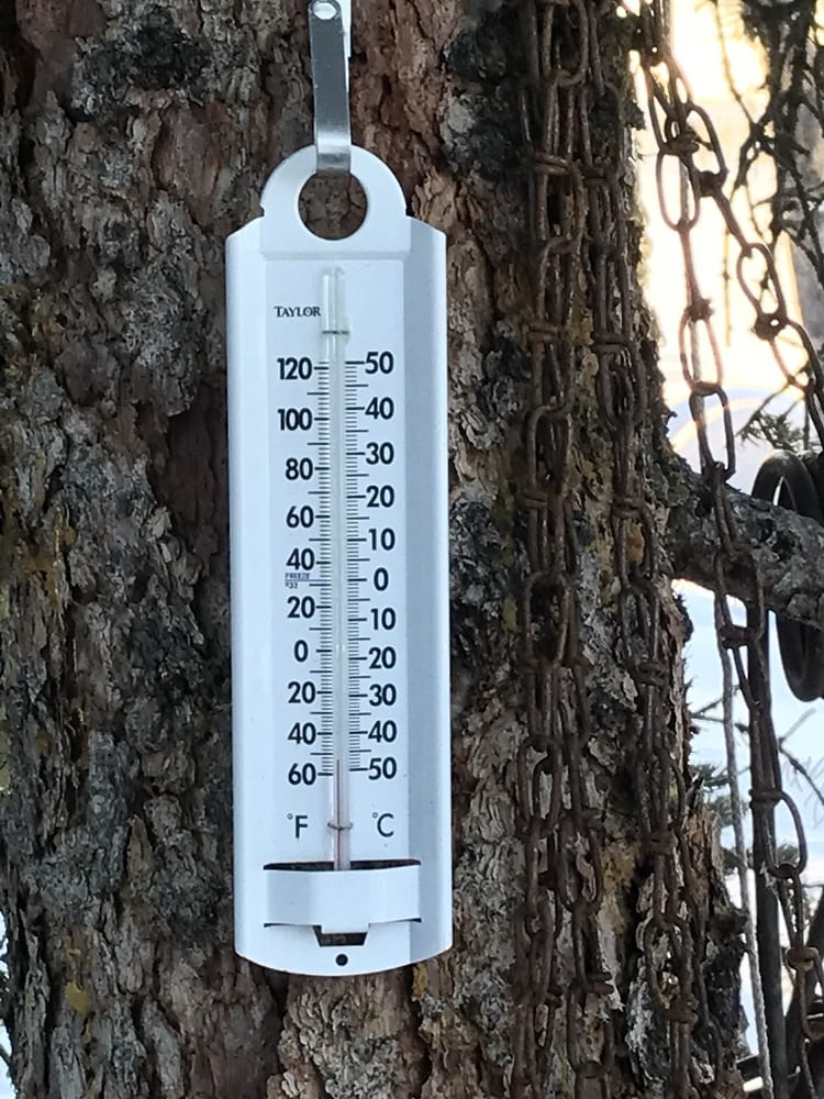 5-Pic-Thermometer.jpg