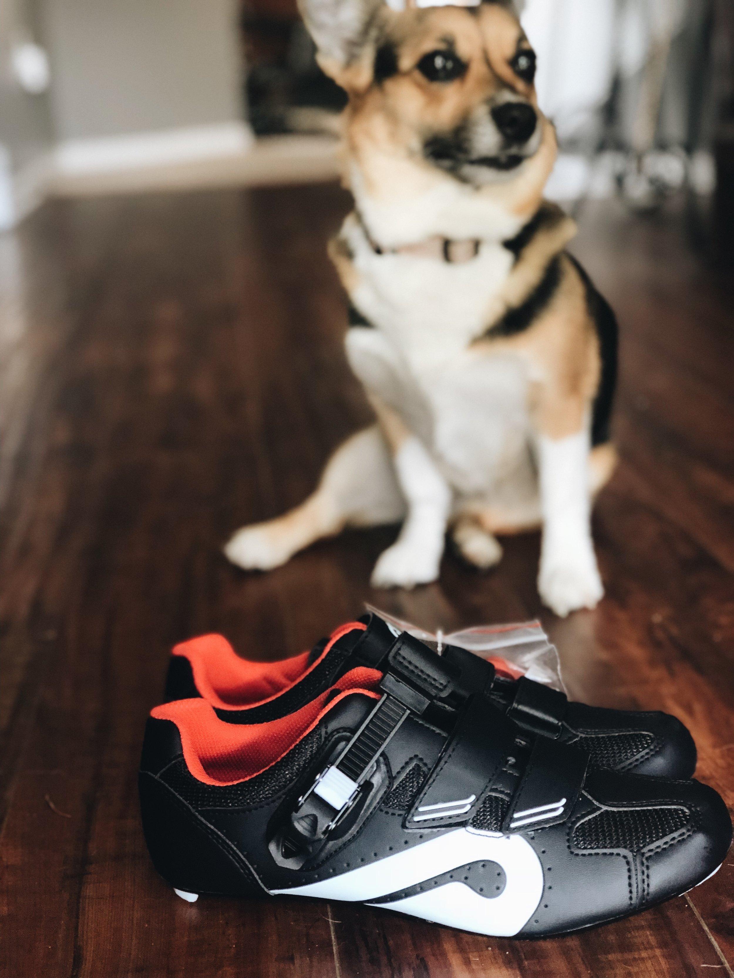 Peloton Spin Shoes