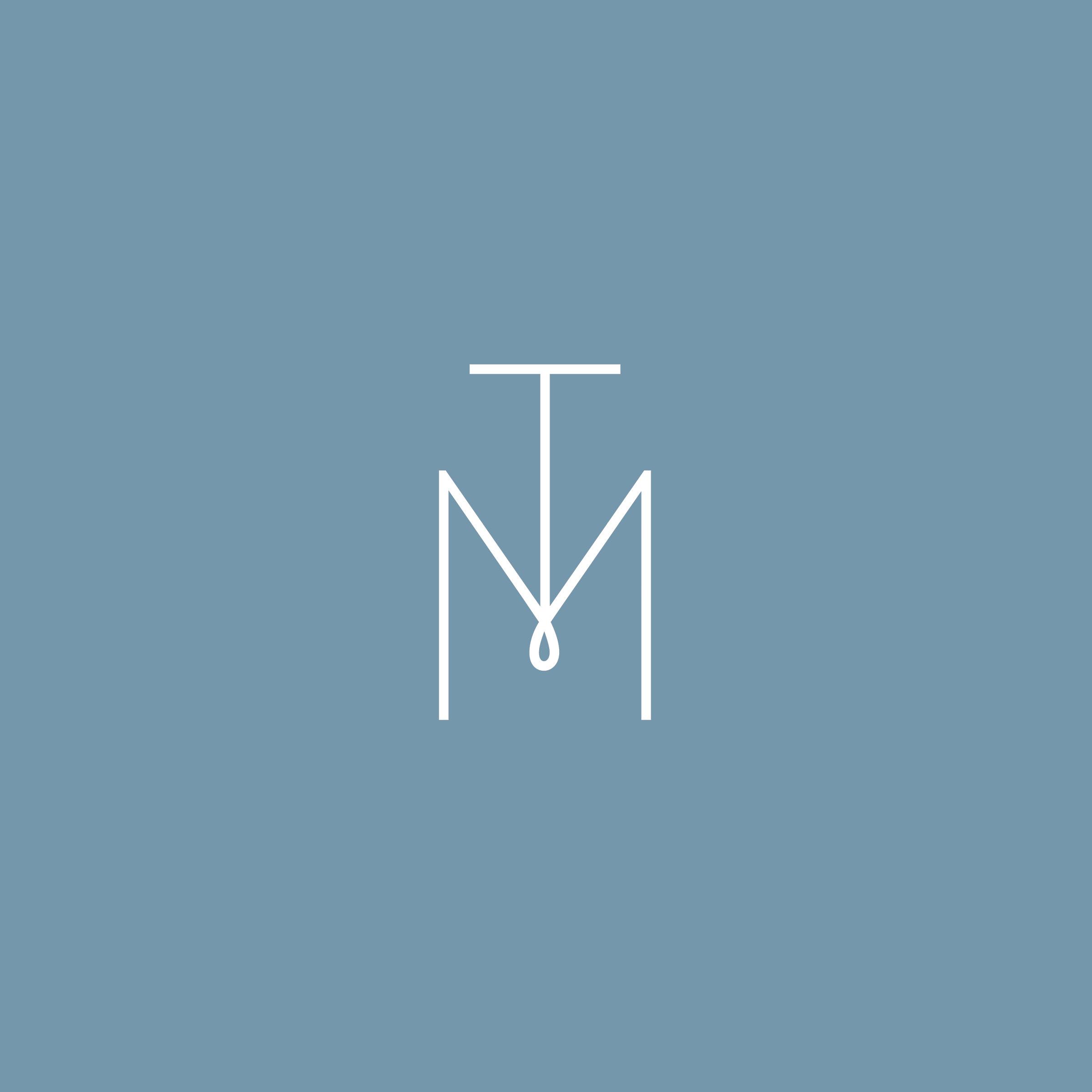 Tara_Straight Brandmark on Blue.jpg