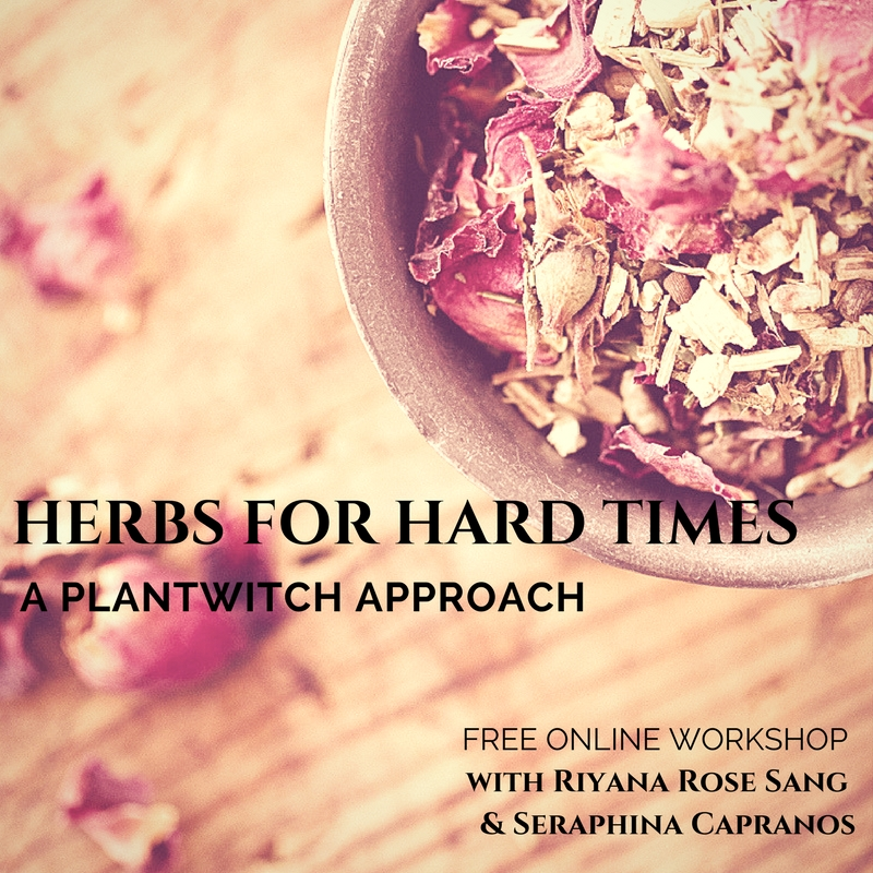 Herbs for Trying Times.jpg