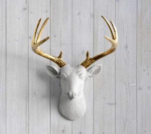 deer-1-1-300x267.jpg