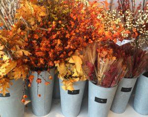 blog-flower-1-300x238.jpg