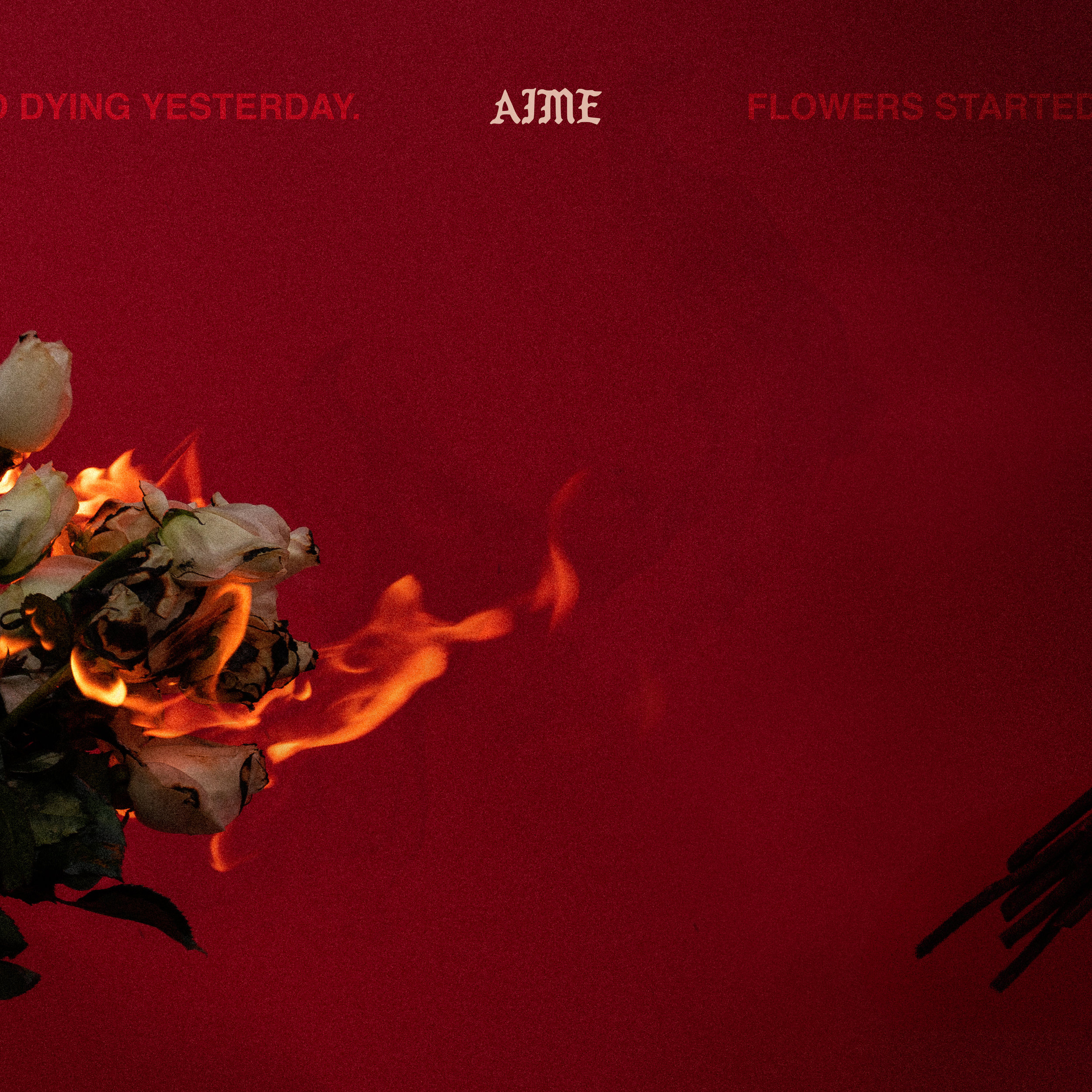 AIME FLOWERS FINAL (1).jpg