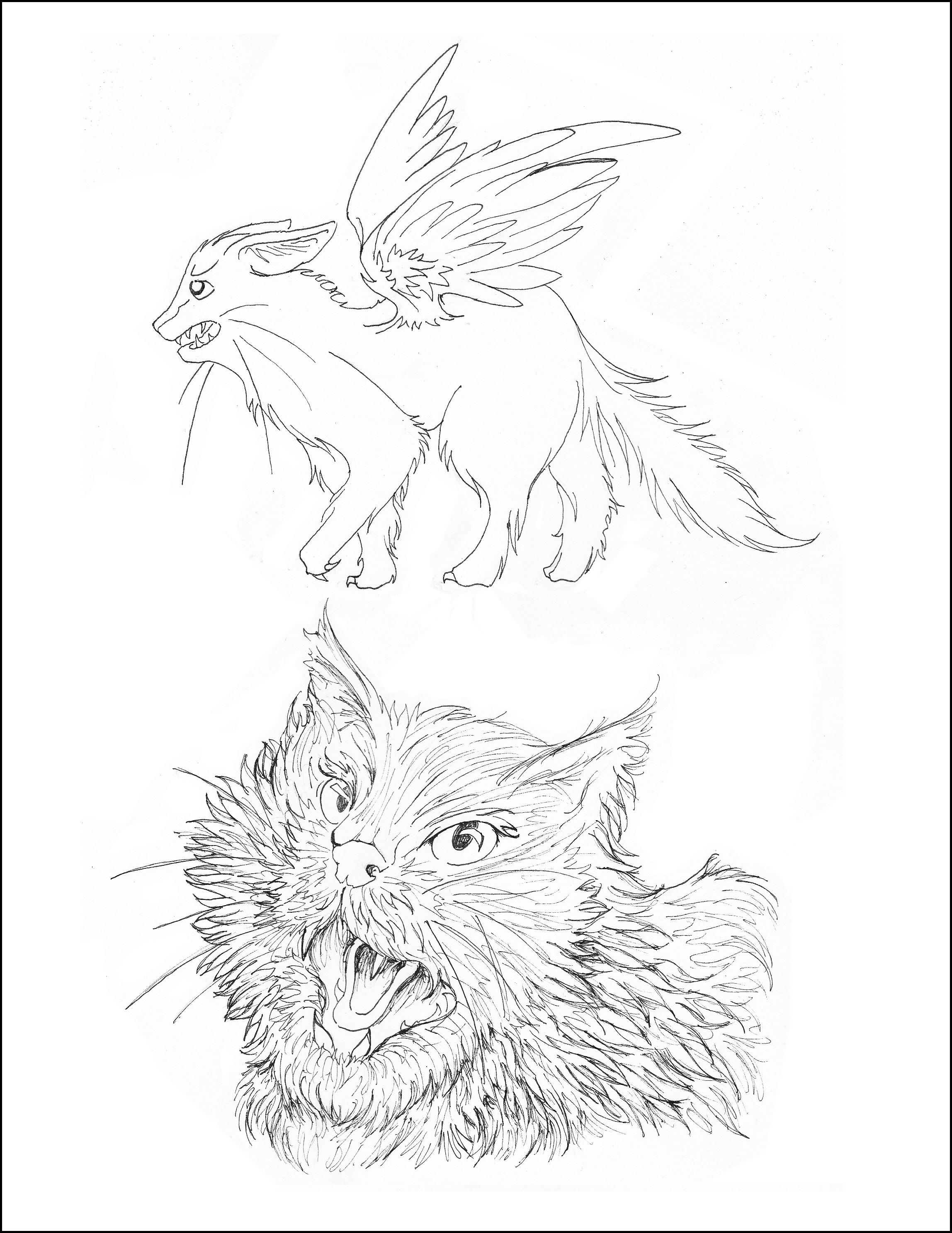 Feline Illustrations