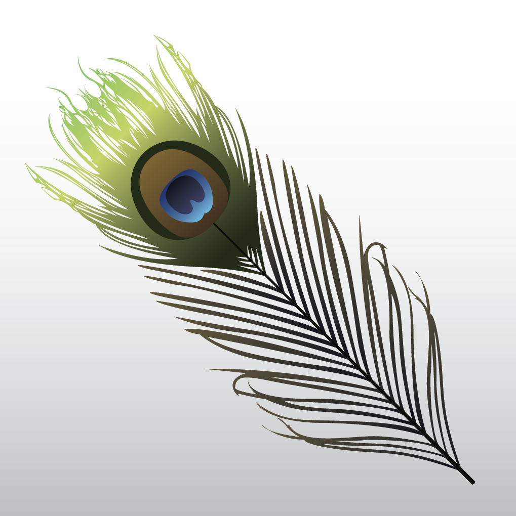 22_feather.png