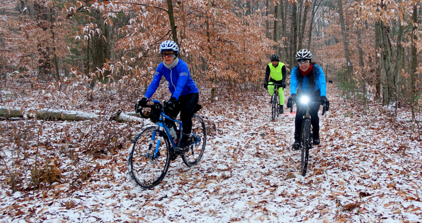 Crunching leaves on the new snow - photo - Rob Vandermark.JPG