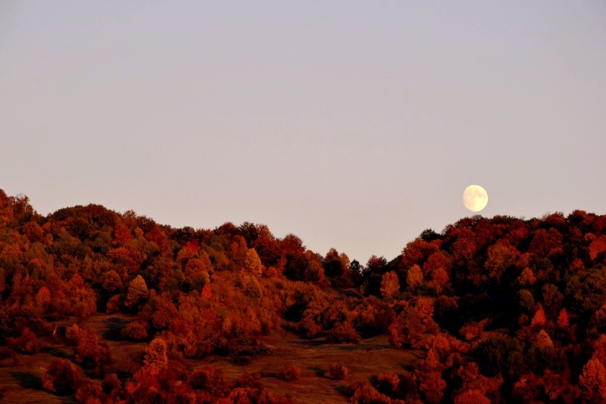 The Hunter's Moon occurs in October, the first full Moon after the Harvest Moon.