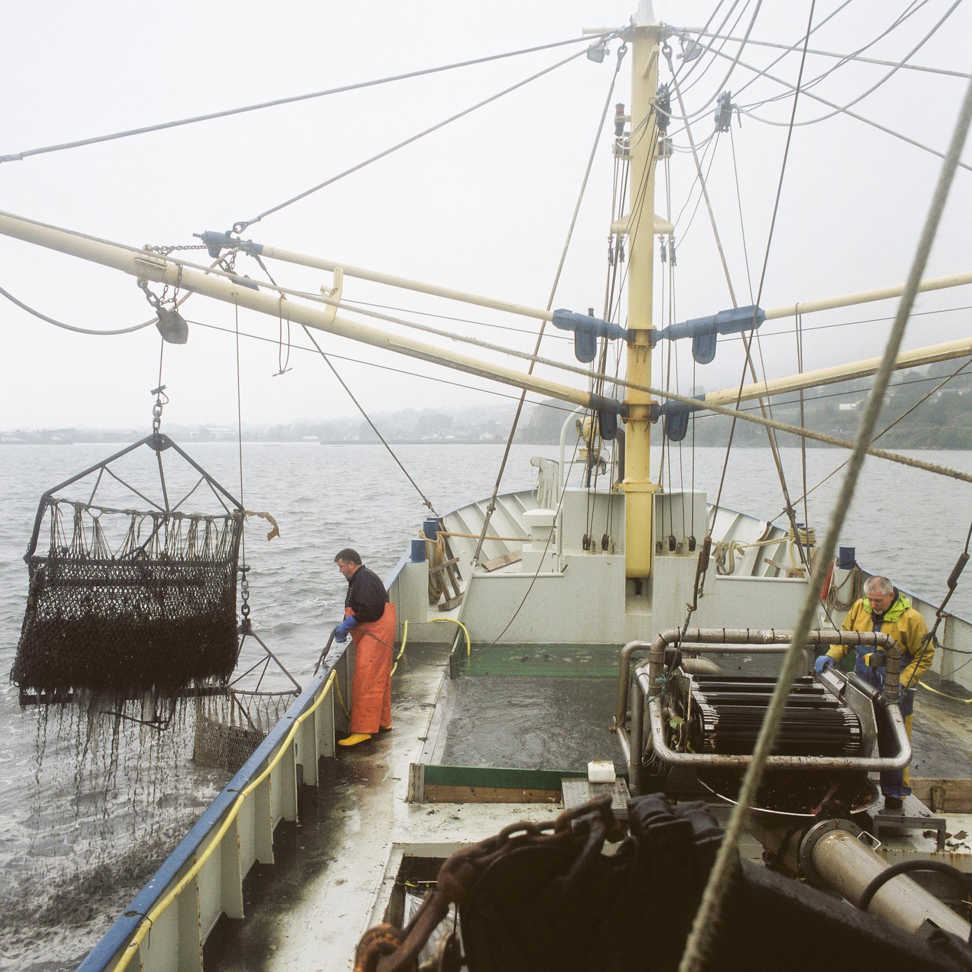 John Graham and Michael Curran fish for mussels in Carlingford Lough aboard a UK registered boat