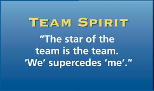 Team-Spirit.png