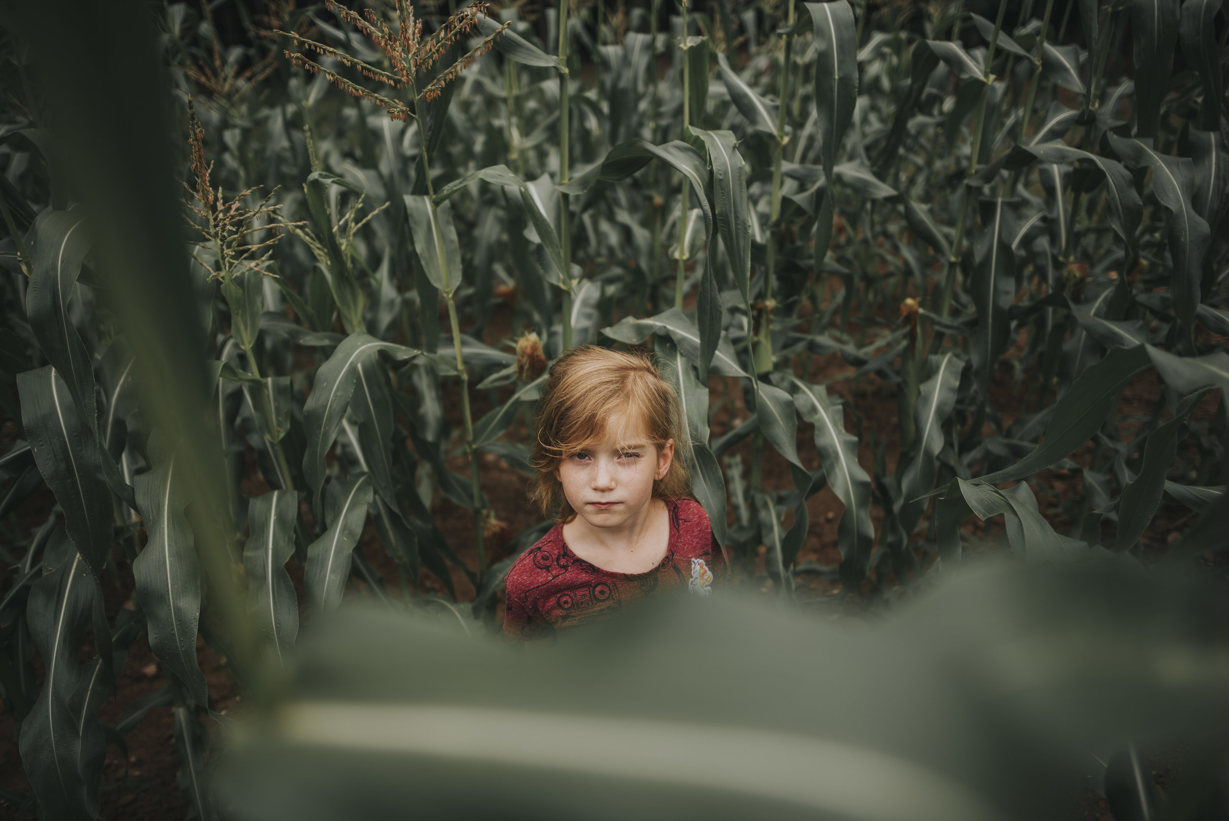 "JONI BURTT - ""In The Corn""  24mm ISO160 f/1.8 1/800"