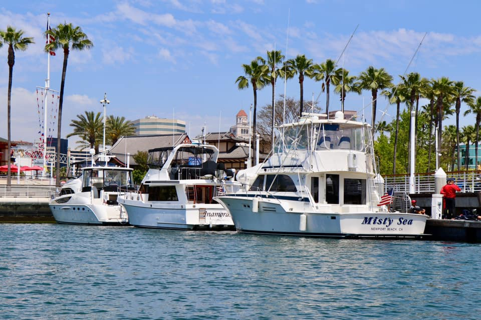Boats docked at Pine st dock.jpg