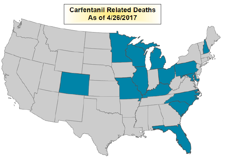 Currently 14 states have reported having Carfentanil. But New Hampshire is the only New England state so far.  CREDIT NEW HAMPSHIRE DRUG MONITORING INITIATIVE