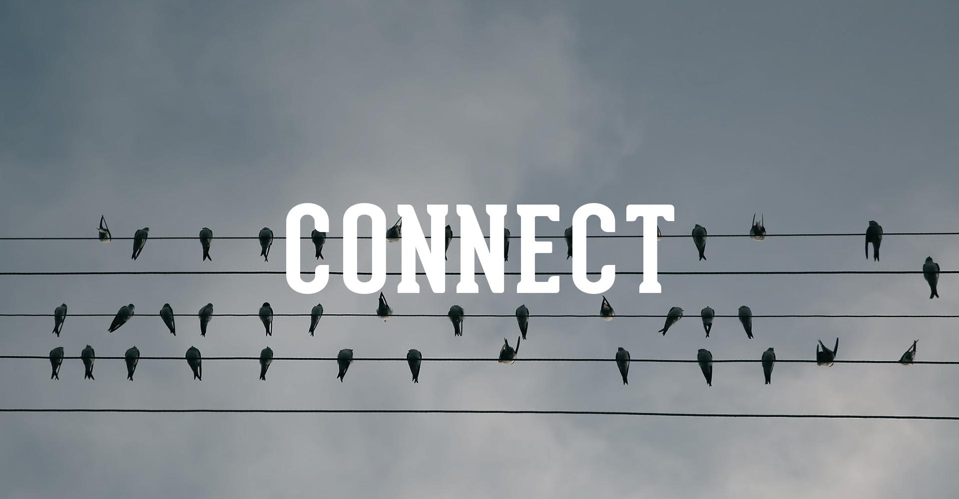 Connect Box.jpg