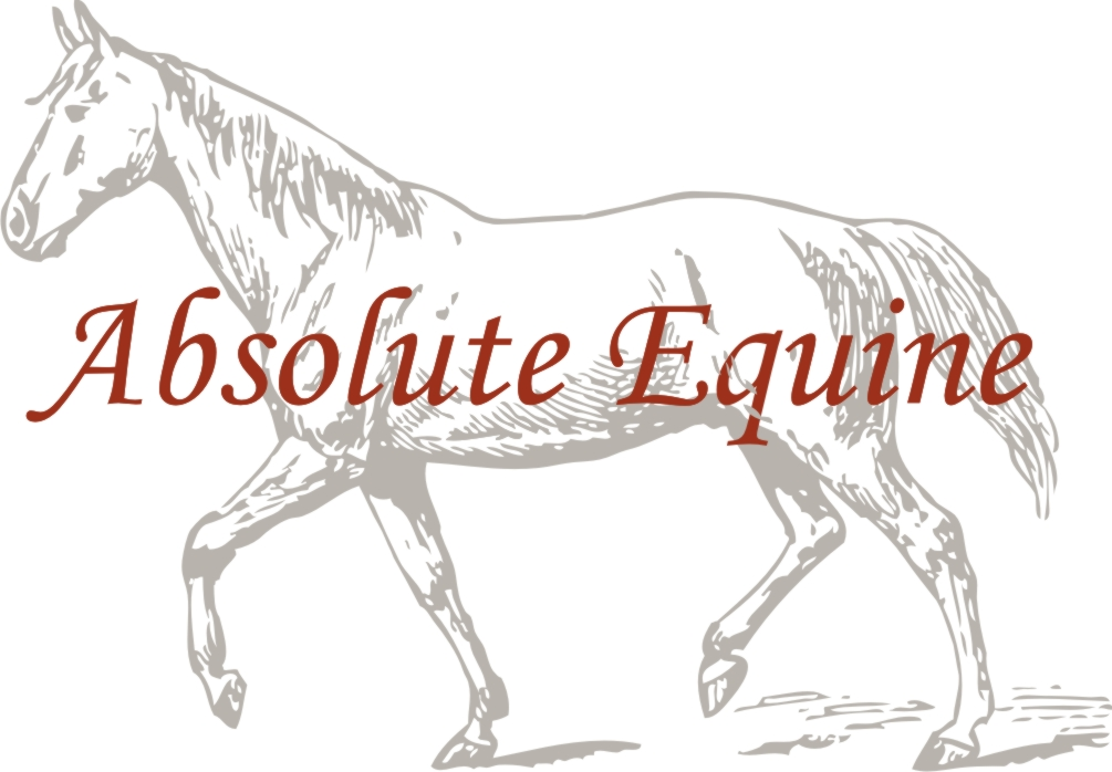 Absolute Equine.jpg