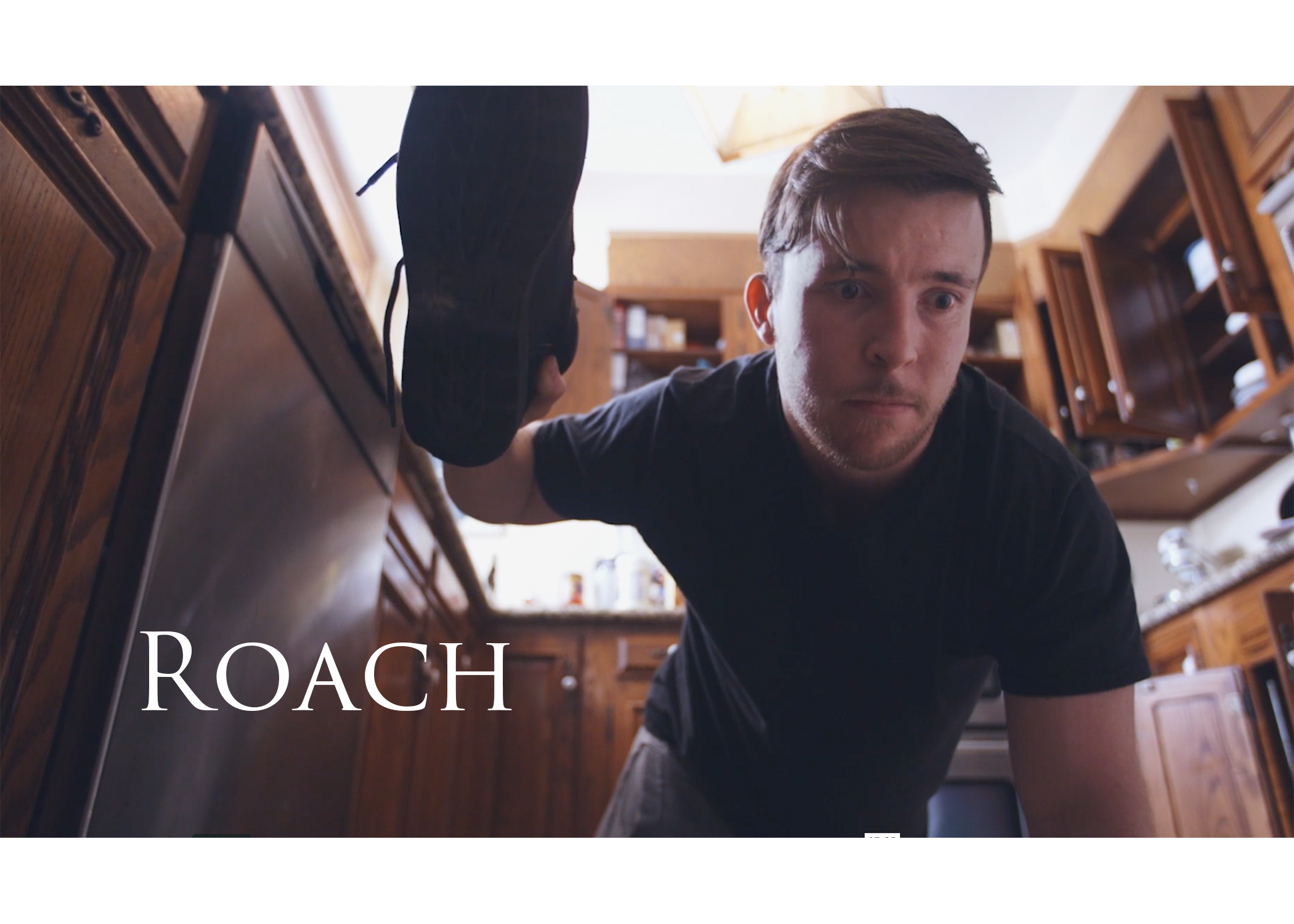 Roach Poster.png