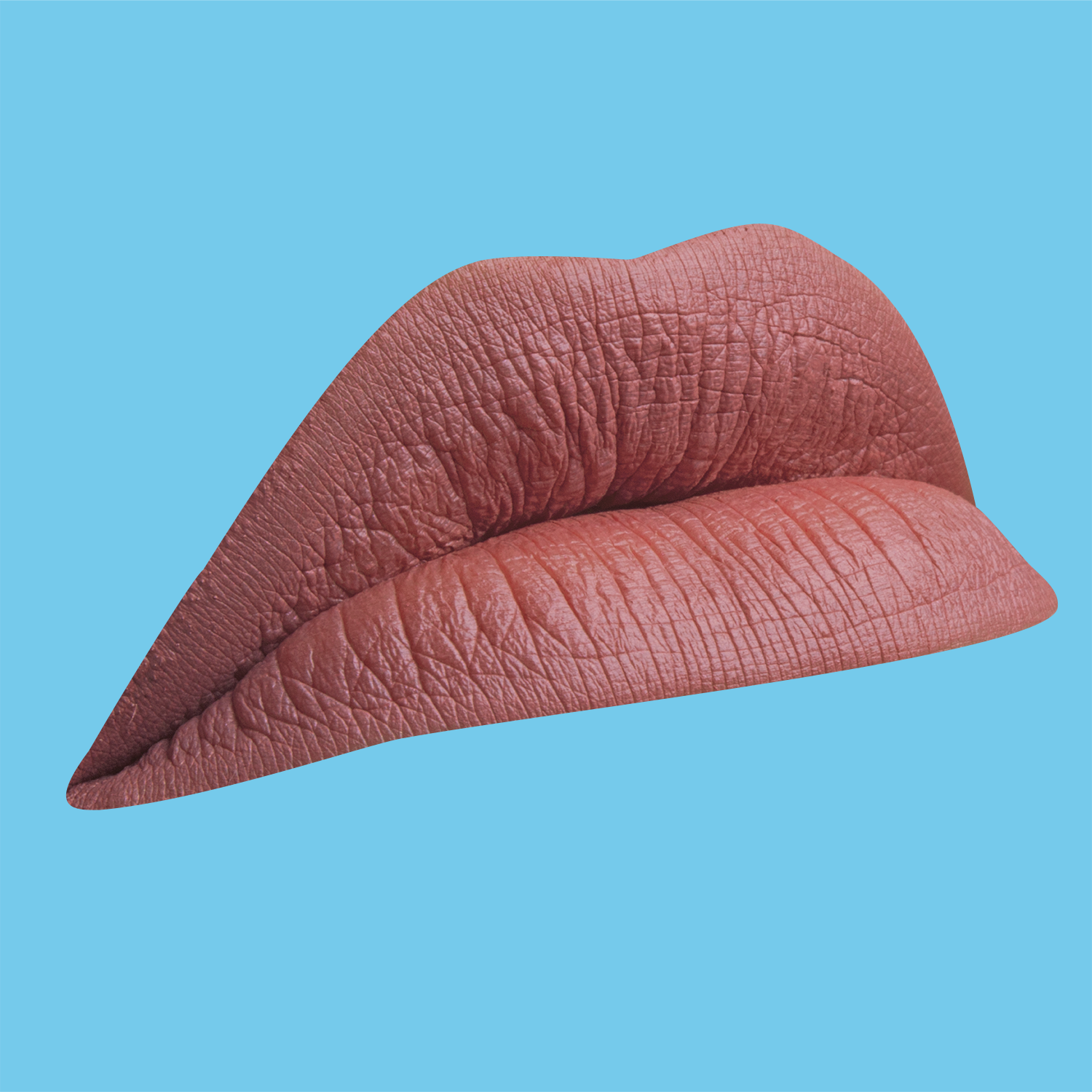 lips 004 new.png