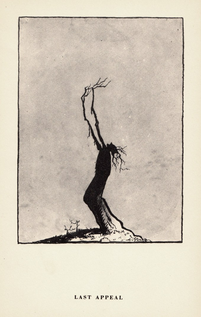 Arthur Henry Young. Life through the eyes of Trees
