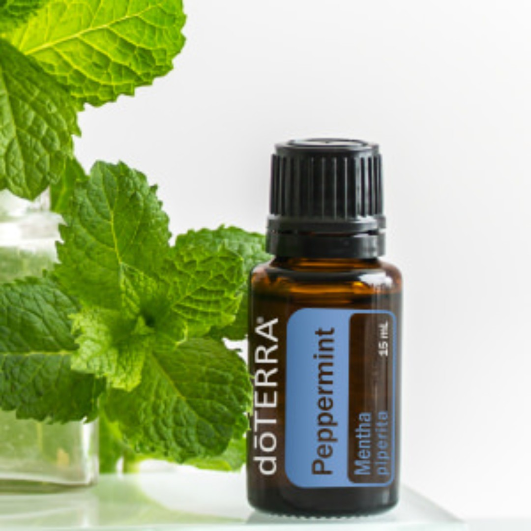 dterra_peppermint_oil_15ml_1532862993_5e1601980.jpeg