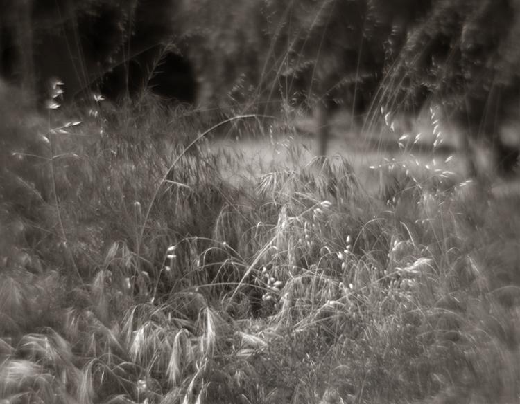 4x5 9in lens