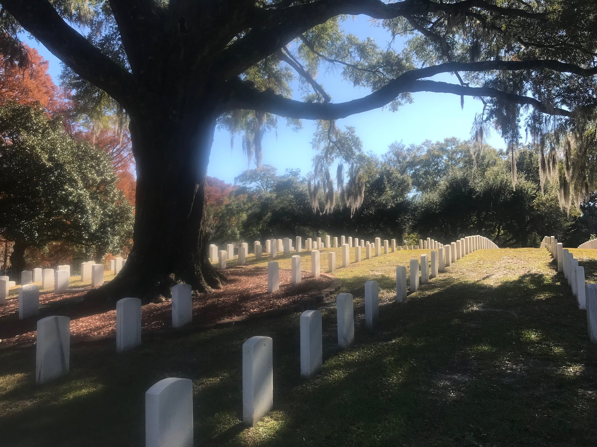 "Wilmington National Cemetery has a section where more than 500 ""colored troops"" who fought for the Union are buried."