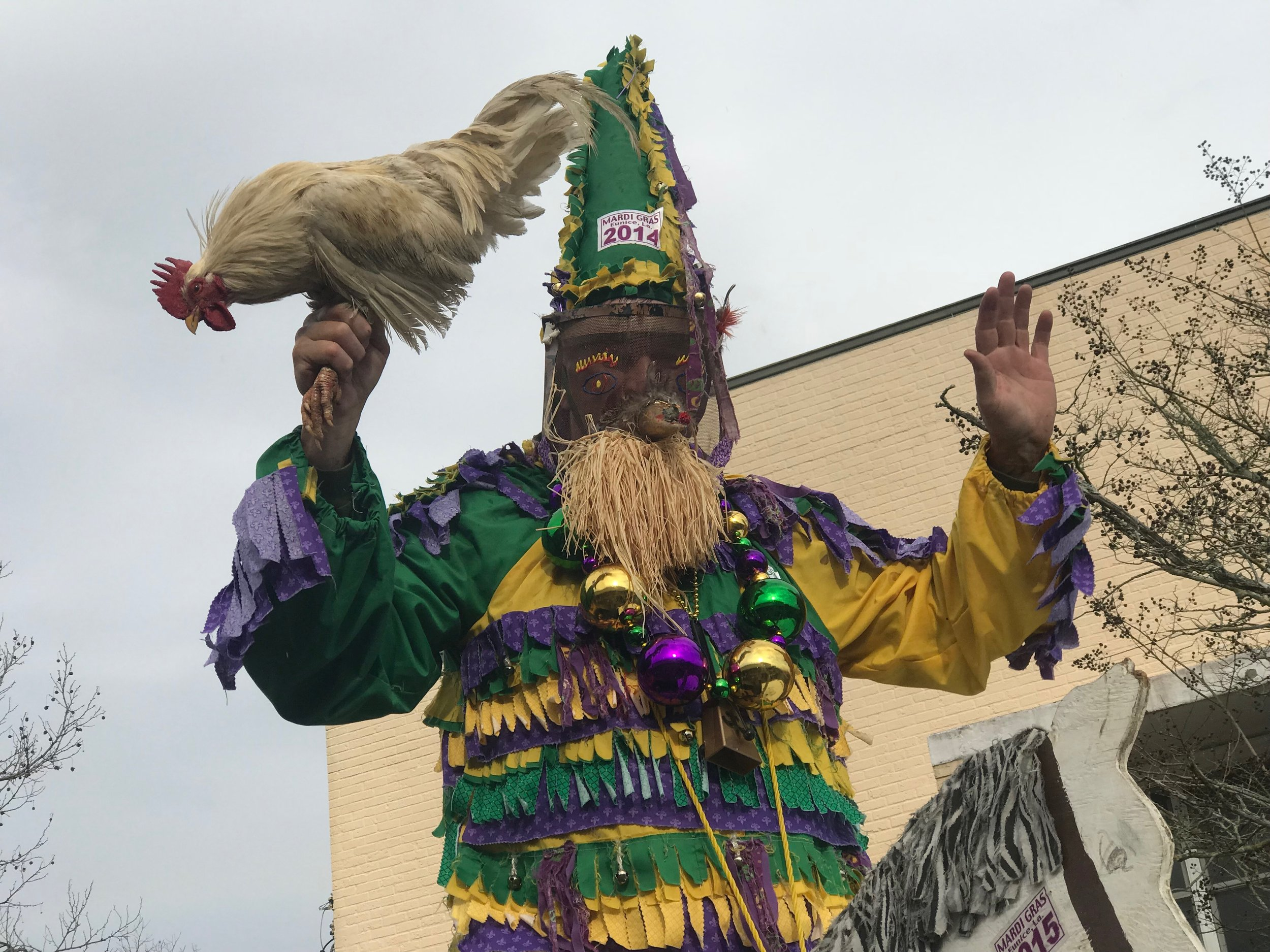 In the Cajun community of Eunice, Mardi Gras revelers wear traditional homemade costumes, and sometimes bring chickens to the parade.