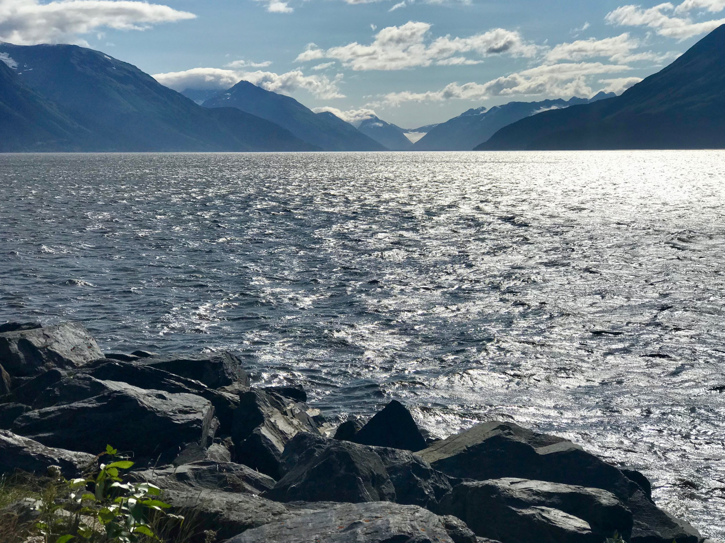Alaska's Seward Highway hugs the coast of the Turnagain Arm, home of beluga whales, Dall sheep and glaciers.
