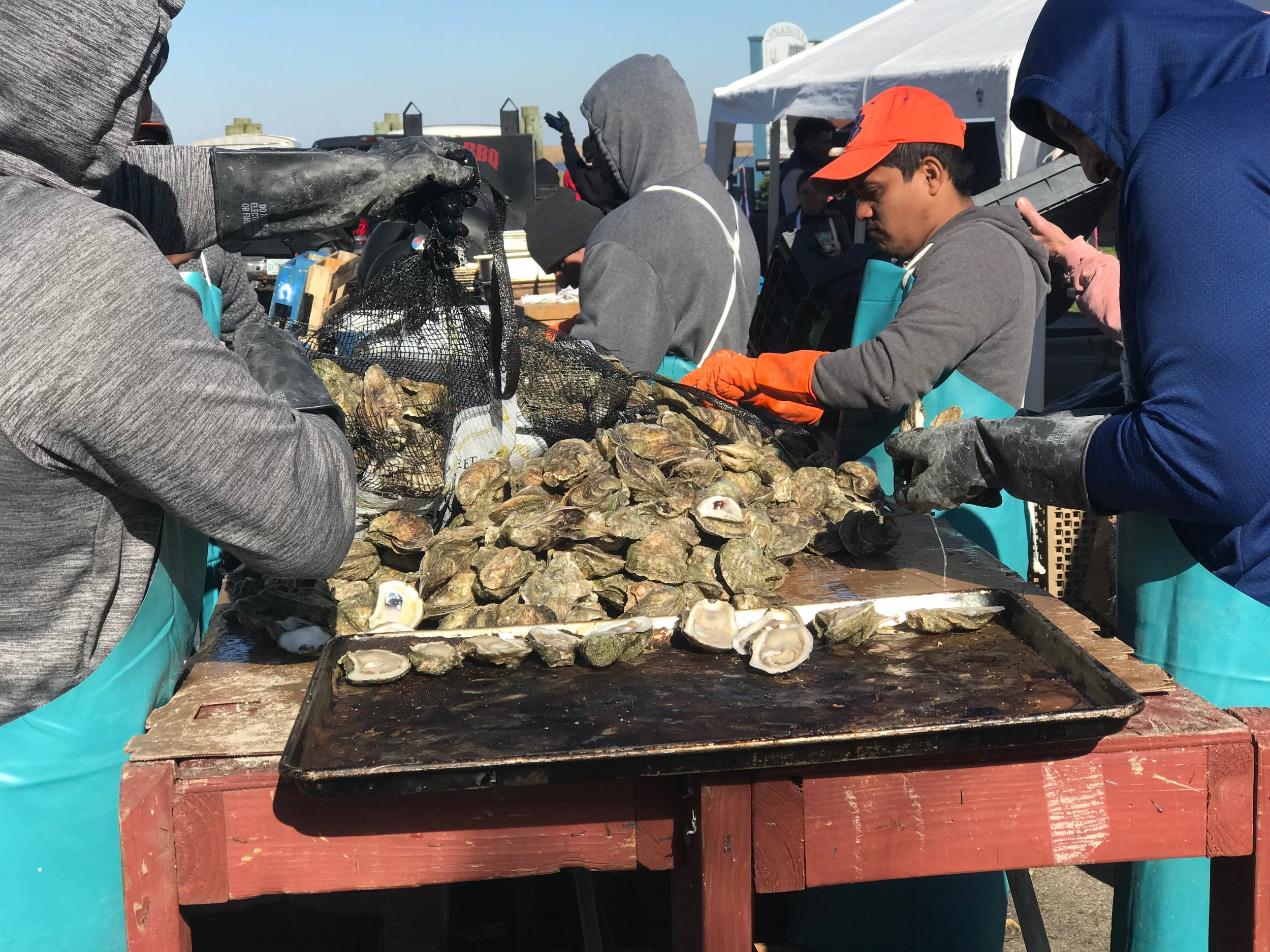 Cooking up the main attraction last January at the Apalachicola Volunteer Fire Department Oyster Cook-Off.